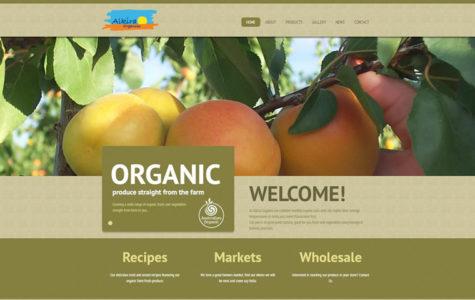 webdesign-portfolio-alkira